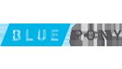 Blue-Pony